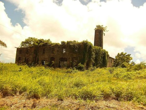Distilerie abandonată în Barbados