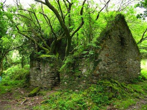 Drumul Kerry Way dintre Sneem și Kenmare, din Irlanda