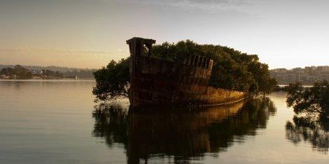 Rămășițele Ayrfield SS în Homebush Bay, Australia