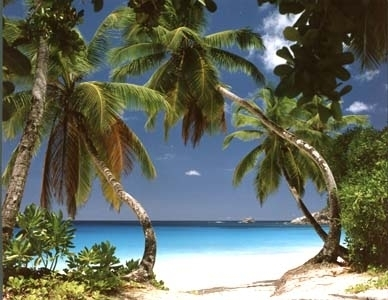 Seychelles , locul in care Raiul a coborat pe Pamant.