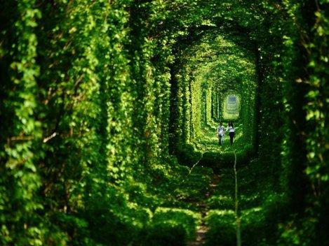 Tunelul Dragostei, Ucraina