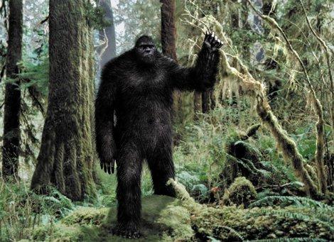 În Washington nu ai voie să hărţuieşti un Bigfoot