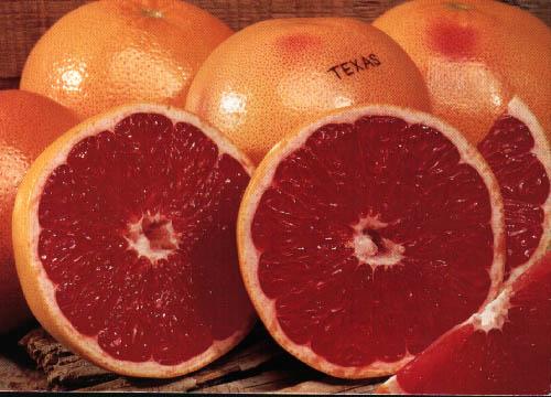 proprietati grapefruit
