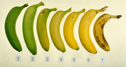 banana - stadii de coacere