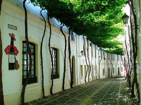 Cele mai frumoase 15 străduţe din  lume (Galerie Foto)