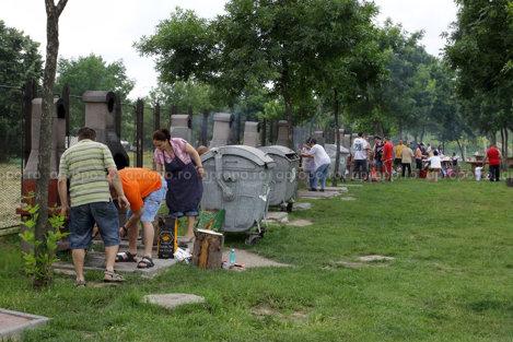 Locul de picnic este dotat cu multe tomberoane pentru gunoiul rezultat, inevitabil, dupa un gratar