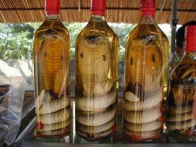 vinul sarpelui