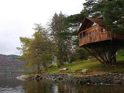 Case in copaci, constructii fascinante(Poze)