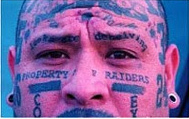 Tatuaj echipa favorita