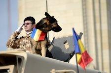 ZIUA NAŢIONALĂ, 1 DECEMBRIE. Peste 2700 militari români şi 280 de mijloace tehnice vor participa la parada de 1 Decembrie