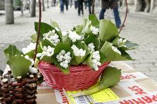 """Ziua Naţională a României, mutată primăvara? """"10 mai este o dată foarte importantă. În mai e mult mai frumos afară şi lumea se poate bucura, pe când de 1 Decembrie e întotdeauna frig"""