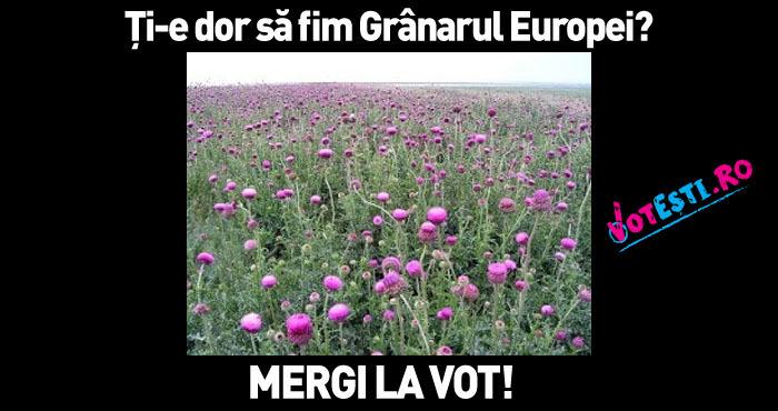 Grânarul Europei