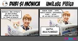 Dubi şi Monica