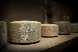 A fost descoperită cea mai veche brânză din lume
