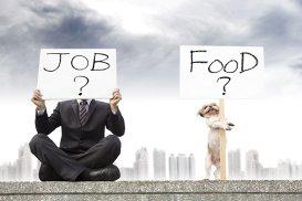Joburi din industria culinară cu salarii ce depăşesc şi 200.000 de dolari/an