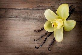Deficitul global tot mai mare de vanilie va scumpi îngheţata vara aceasta