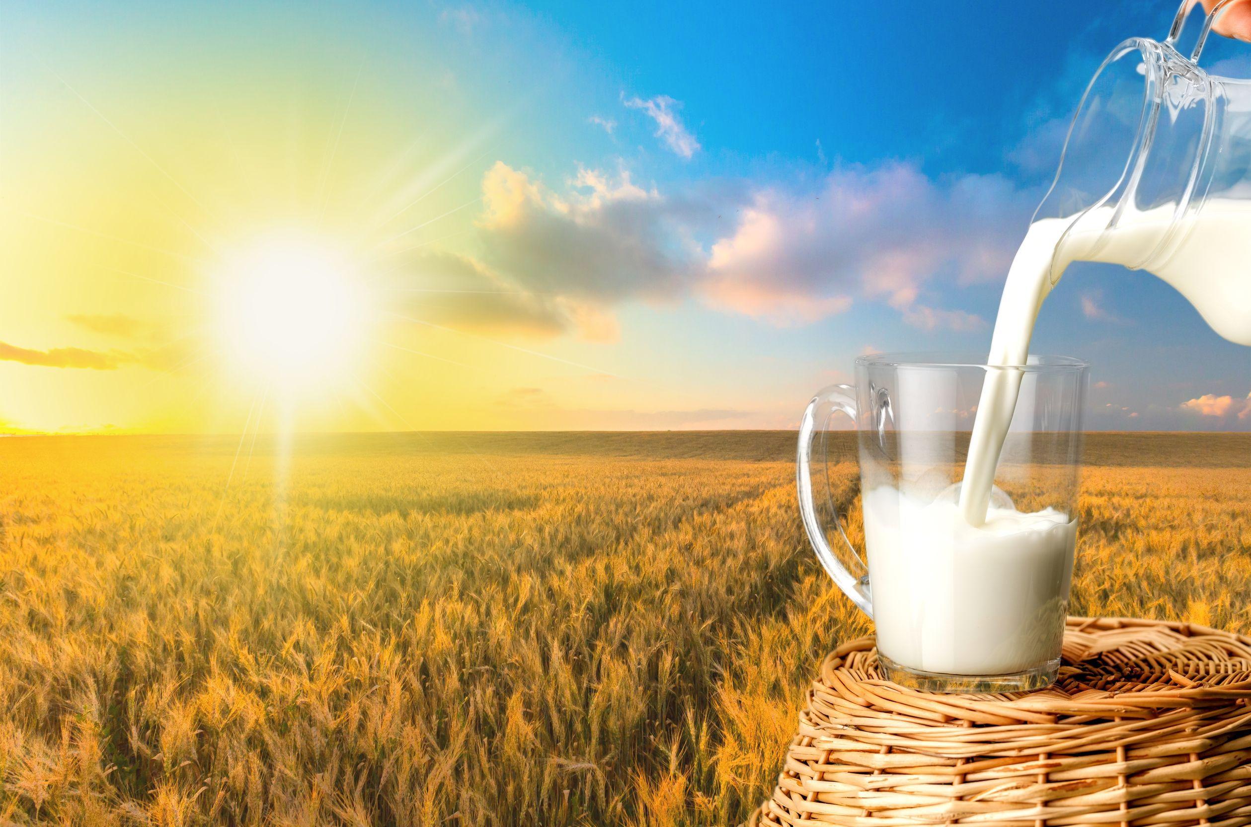 Ambalajul comestibil, arma cercetătorilor în lupta pentru reducerea risipei de alimente şi plastic