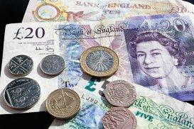 Noua bancnotă de 5 lire sterline stârneşte furia veganilor britanici