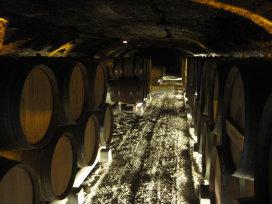 Cum un antreprenor din Silicon Valley reinventează vinul într-un castel de secol 18 din Burgundia