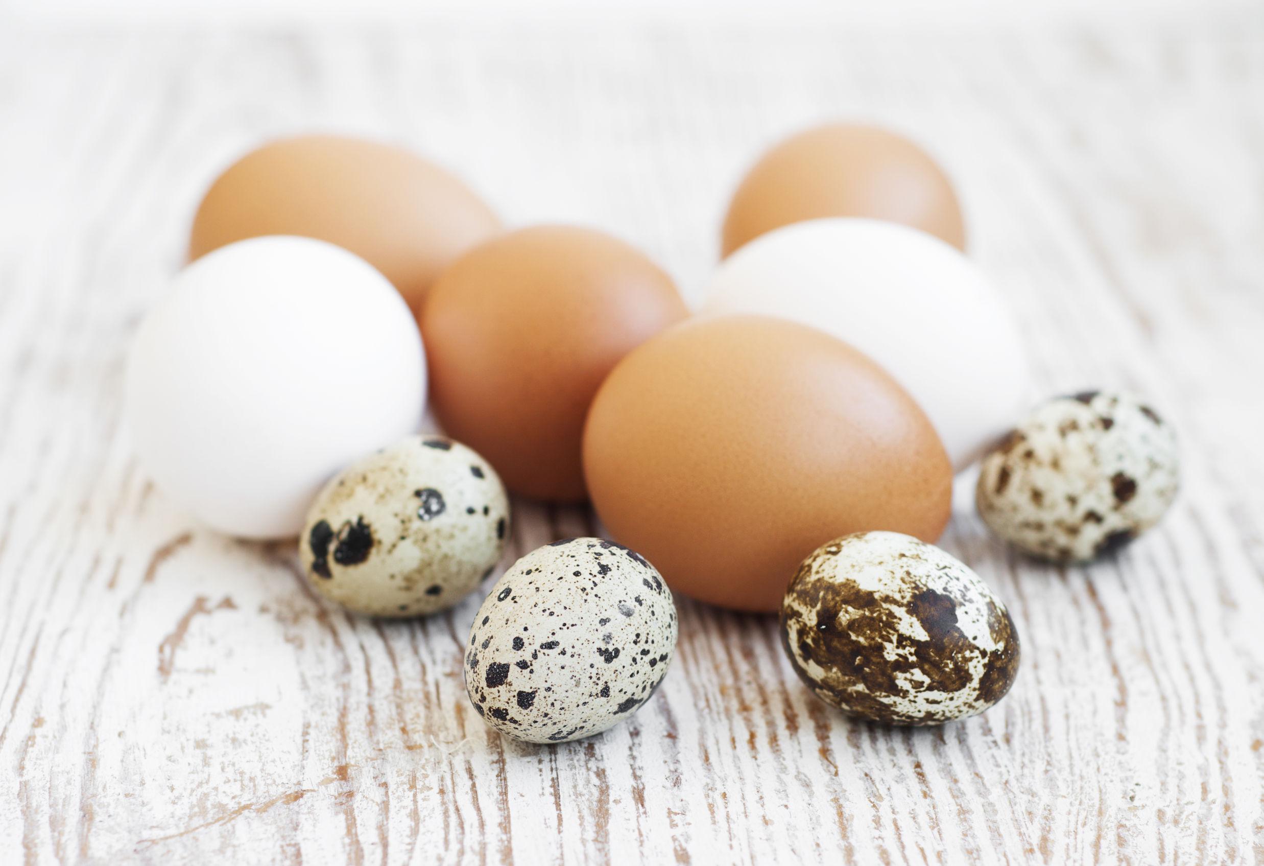 Scandalul ouălor schimbă legislaţia în UE