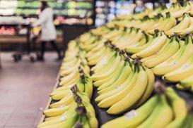 Bananele vor dispărea de pe piaţă în 10 ani