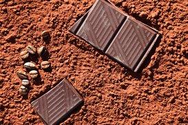 Ciocolata va dispărea până în 2050. Care este şansa pe care o au plantaţiile de cacao?