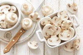 Cum să păstrezi şi să găteşti corect ciupercile