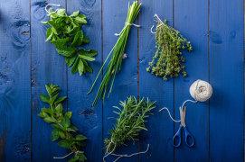 Cum combini plantele aromatice cu alimentele pentru a obţine un gust desăvârşit