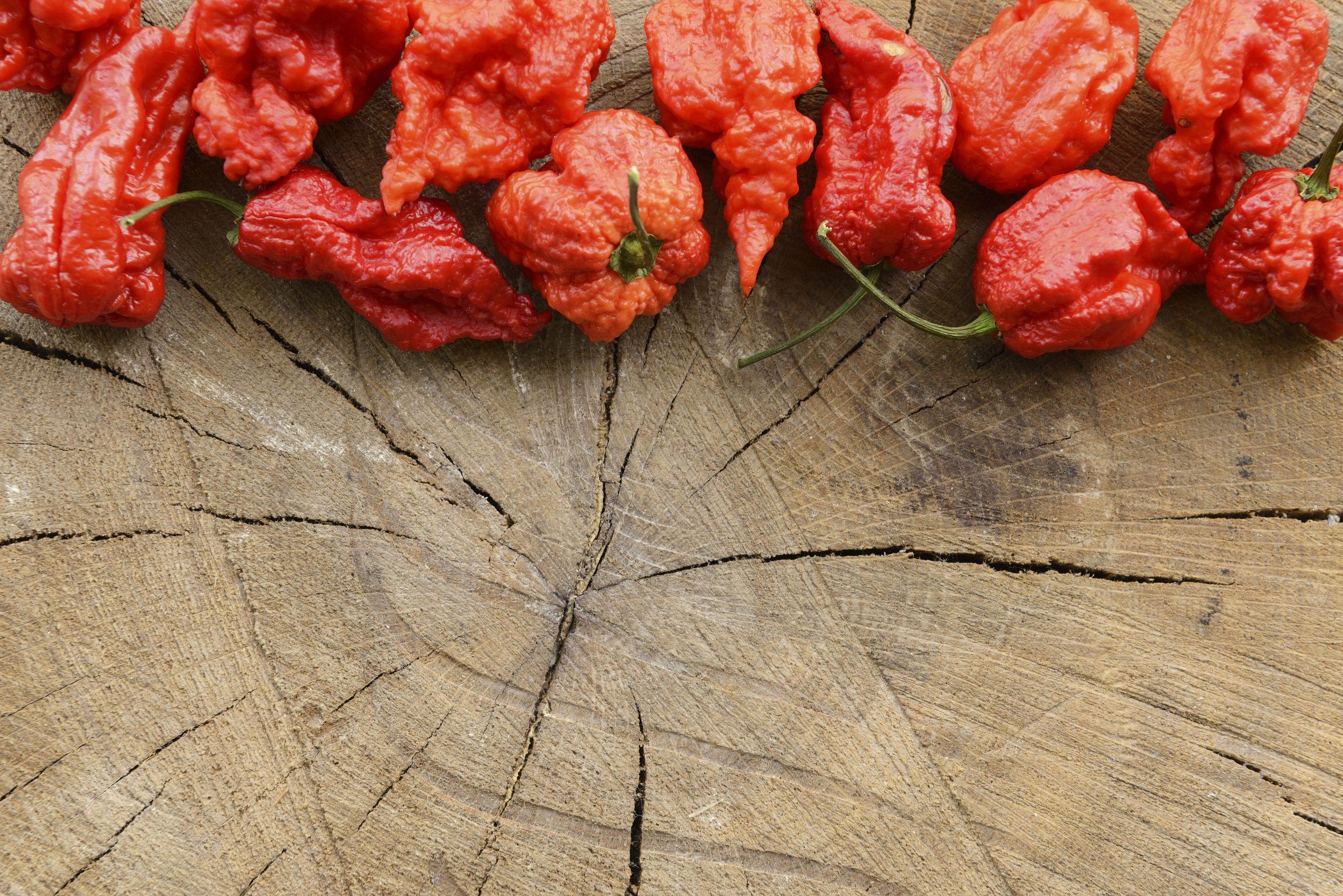 Cei mai iuţi ardei din lume, testaţi în cadrul unui concurs inedit în România