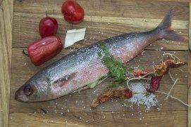 Cum faci diferenţa între peştele proaspăt şi cel vechi