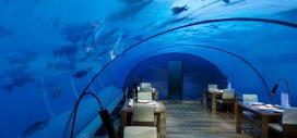 Topul celor mai ciudate restaurante din lume