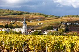 Povestea vinului. Cele mai în vogă destinaţii în 2016
