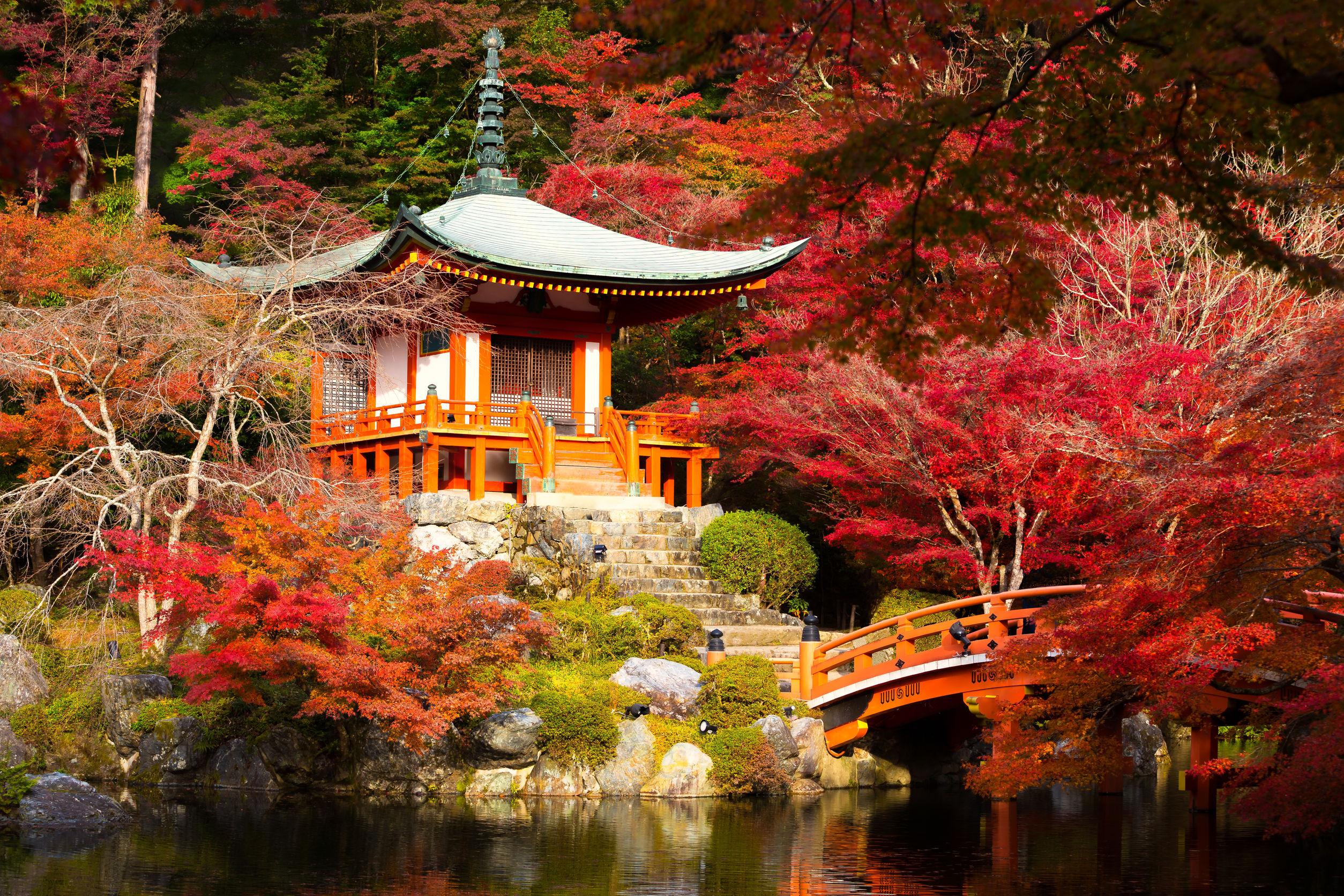 Probabil cel mai fotogenic oraş din lume. Paradisul culinar din Kyoto