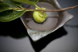 Kaiseki, cea mai fină şi sofisticată experienţă culinară din lume