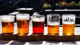 Rolul drojdiei în bere: Ale vs. Lager
