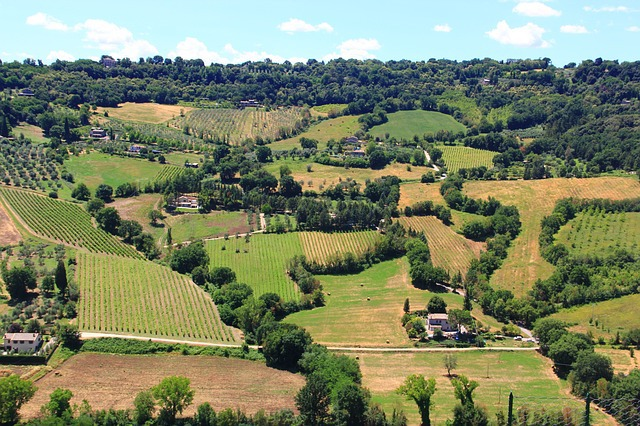 Ghidul vinurilor din regiunea Umbria, Italia