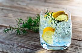Diferenţele dintre vodcă şi gin