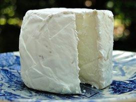 Sarmale cu carne de vită şi brânză de capră, la grătar