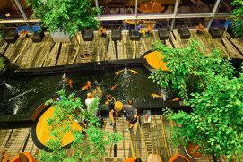 Cel mai bun aeroport din lume, transformat în oraş: masa la Changi