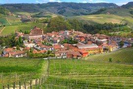 Povestea Barolo, regele vinurilor sau vinul regilor