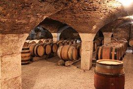 De ce vinul este maturat în stejar: scurtă lecţie de istorie