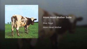 Serial Pink Floyd - episodul 9: Detalii despre simpaticul animal de pe coperta albumului