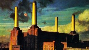Serial Pink Floyd - episodul 18: Povestea porcului de pe coperta