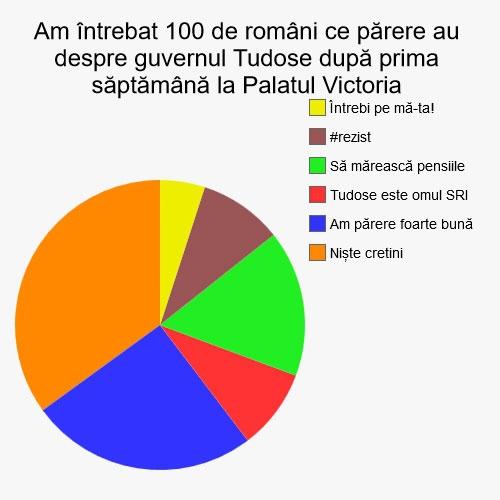 Am întrebat 100 de români ce părere au despre guvernul Tudose