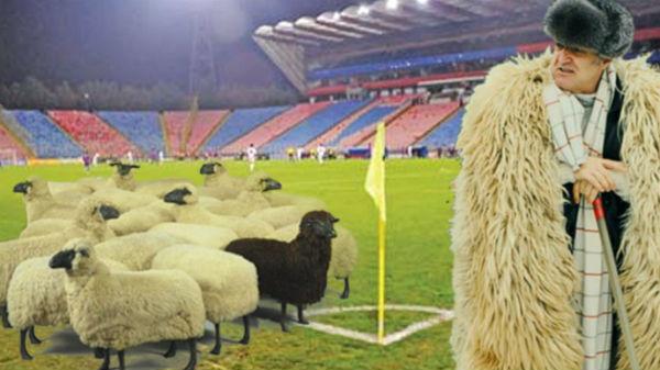 Becali vrea să vândă FCSB şi să cumpere o echipă din Anglia