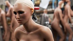 Bordel cu roboţi sexuali: 80 de dolari/ora. Cum funcţionează