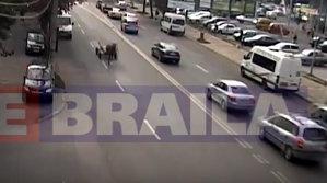 VIDEO - Aşa ceva nu vezi DECÂT ÎN ROMÂNIA!