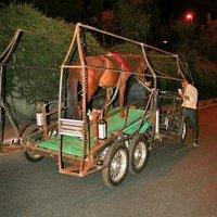 Naturmobil -