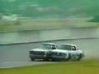Daytona 1979, spectacol