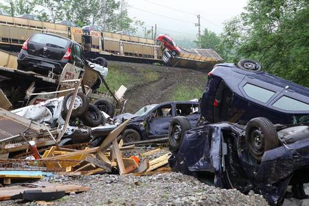 Aproximativ 200 automobile Dacia distruse